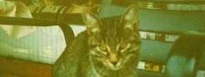 cropped-Oskar-08.1990-001.jpg